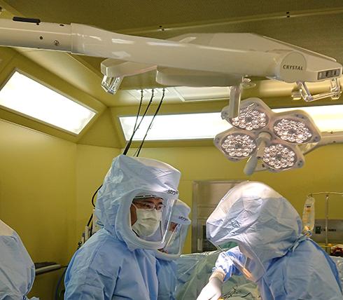当院の主な手術内容